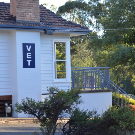 Side viiew of Spring Gully Animal Hospital practice