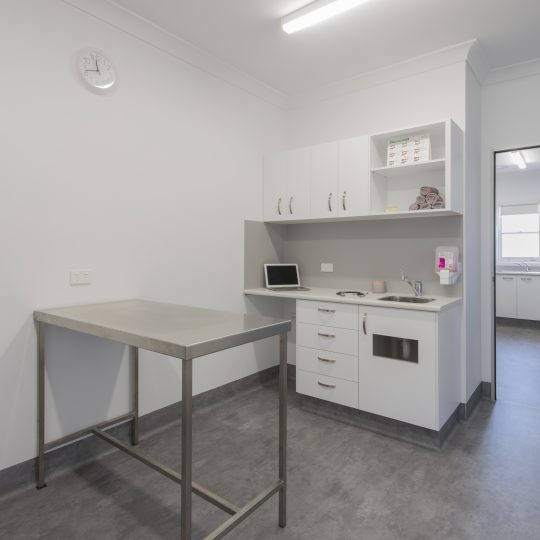 Spring Gully Animal Hospital - Clinic Internal Photo - Consultation / Examination Room