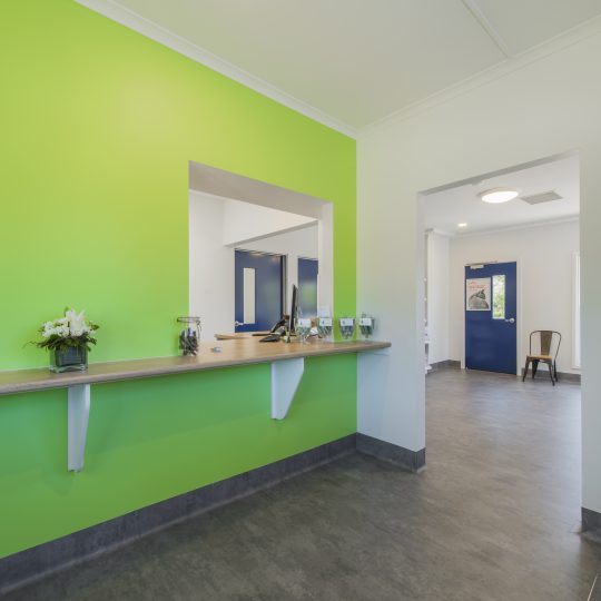 Spring Gully Animal Hospital - Clinic Internal Photo - Reception Area