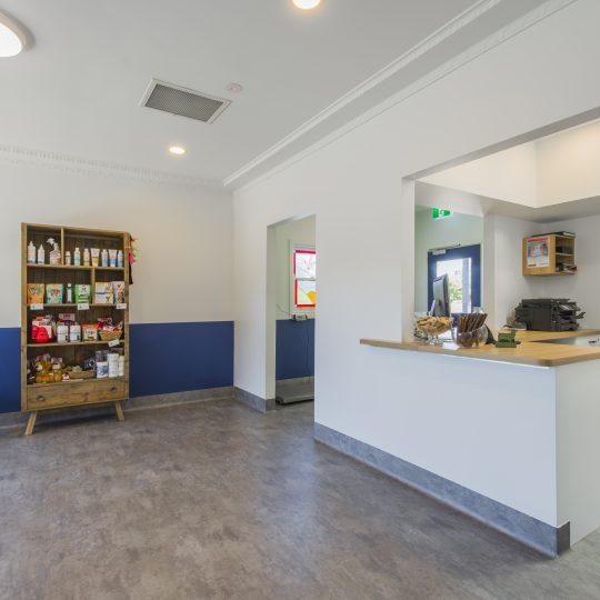 Spring Gully Animal Hospital - Clinic Internal Photo - Reception Area