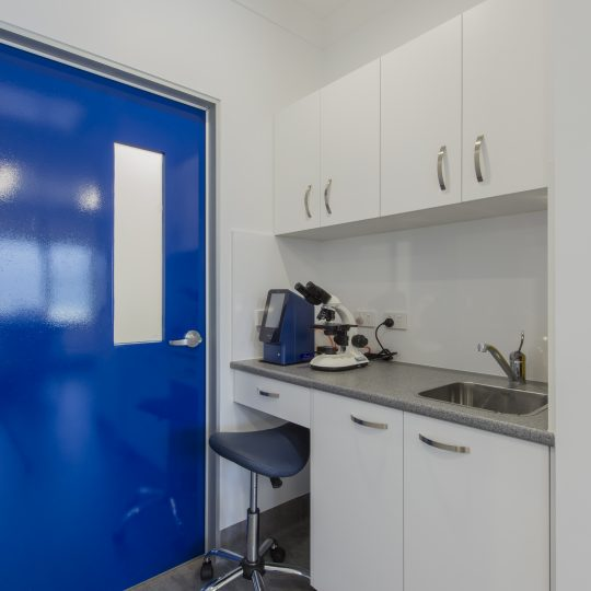 Spring Gully Animal Hospital - Modern Bendigo Veterinary Clinic - Pathology