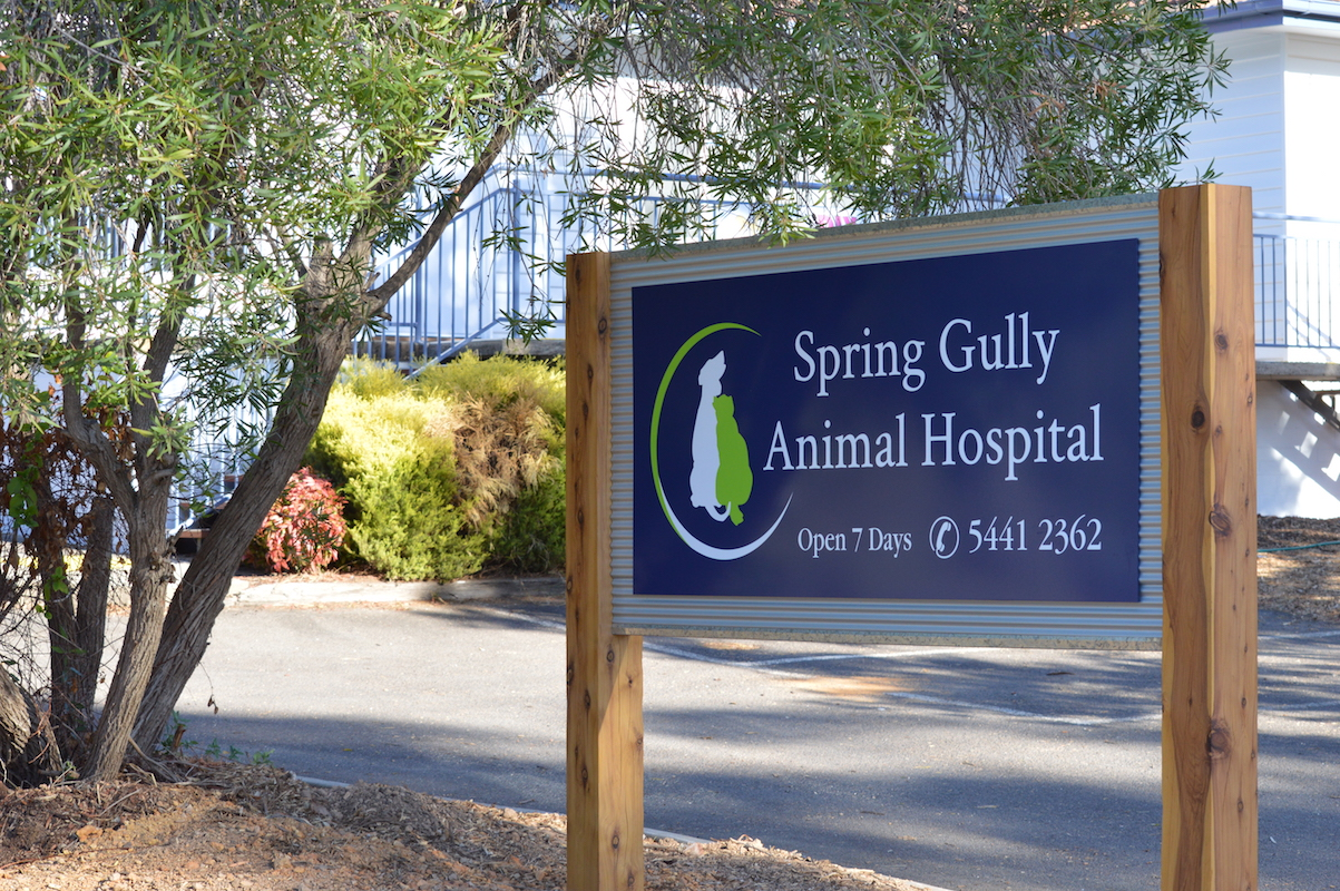 We Are Open Spring Gully Animal Hospital Bendigo